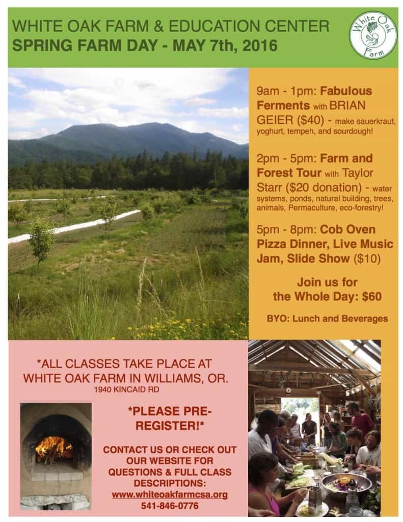 spring farm day flyer